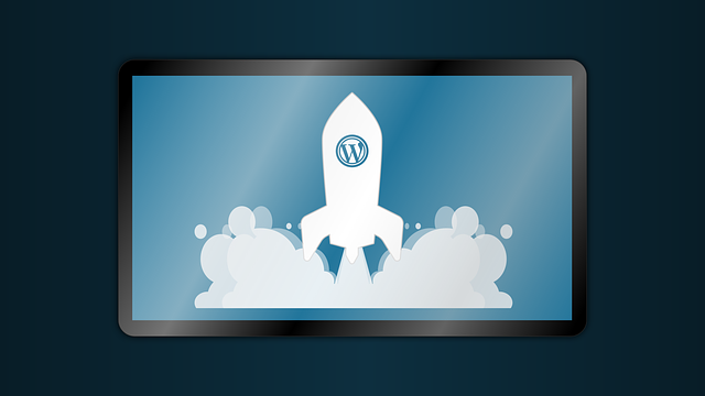 45 пунктов увлекательной статистики WordPress за 2019 год