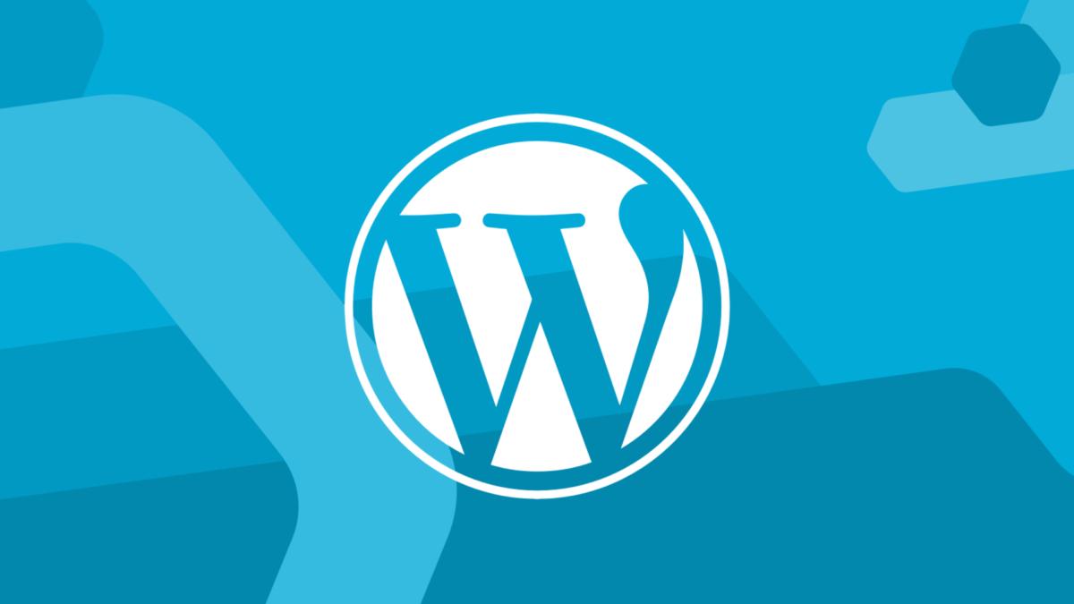 Зарплата разработчиков WordPress: обзор доходов по странам и регионам